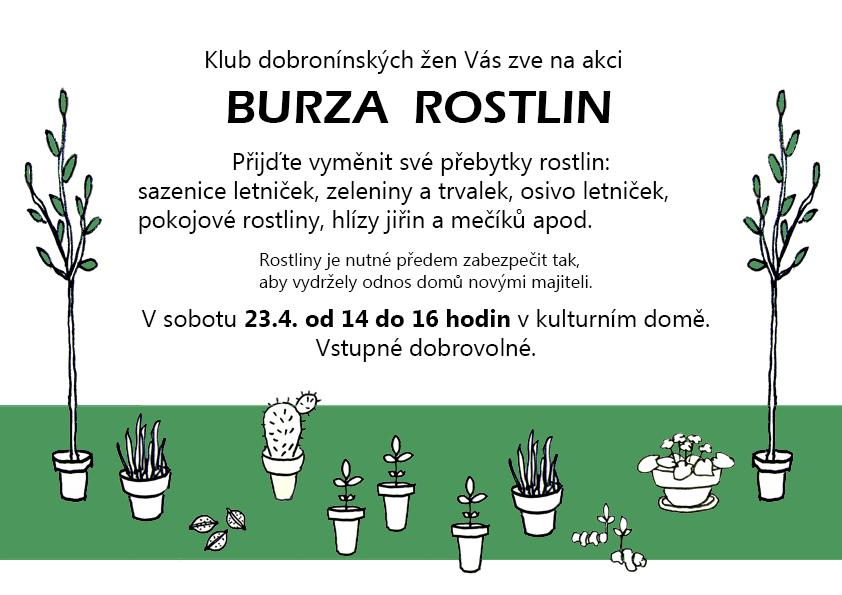 burza_rostlin